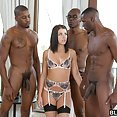 Adriana Chechik And Three Big Black Cocks - image control.gallery.php